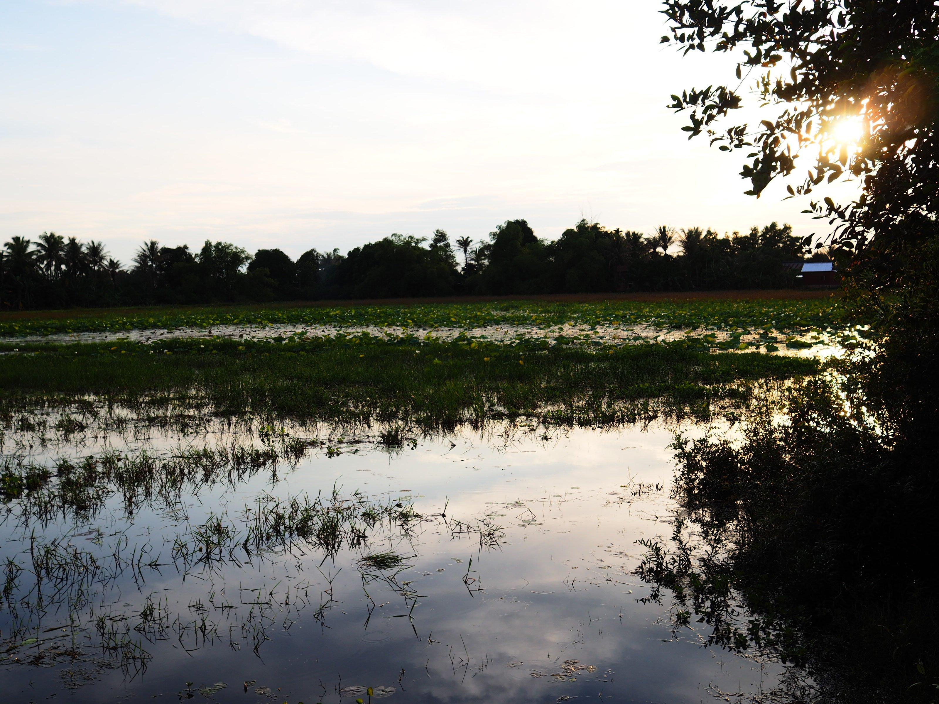 PreAngkorian lake in front Devatas
